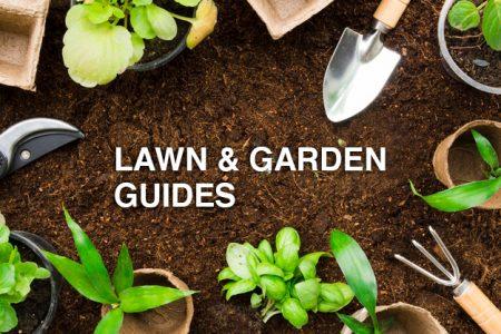 lawn & Garden Care guides